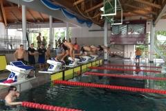 Landesmeisterschaften Schwimmen 2017
