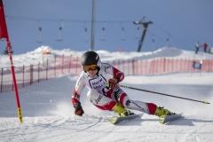 Landesmeisterschaften Ski 2019